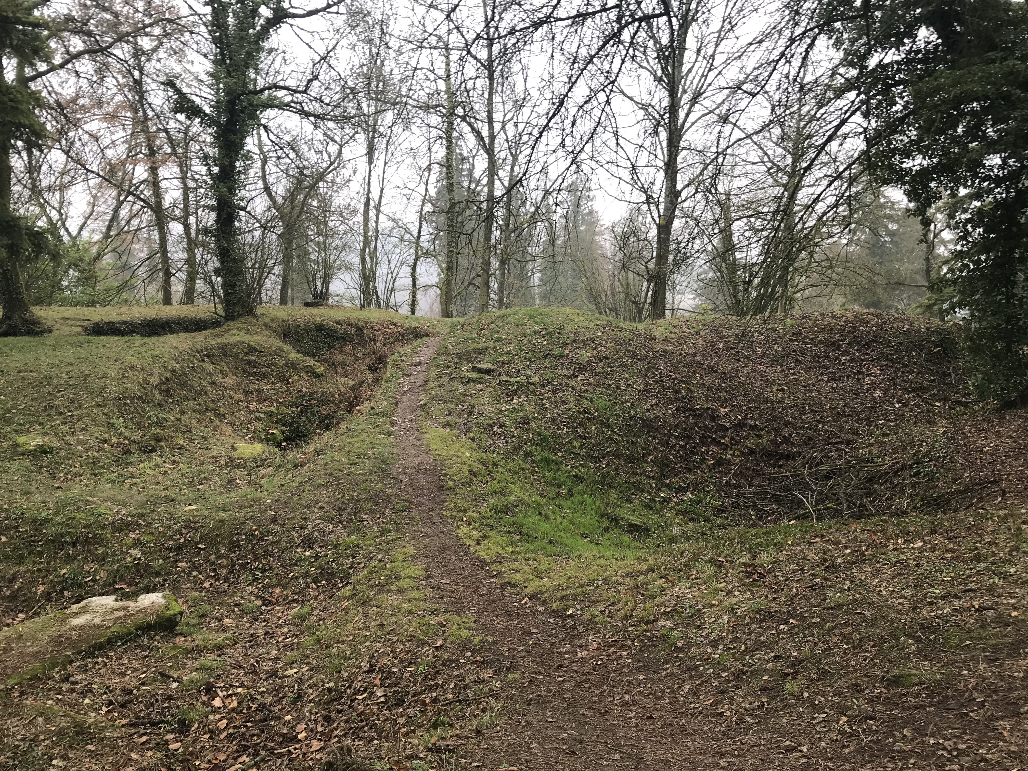 Touring the Chemin des Dames